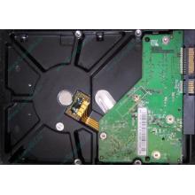 Б/У жёсткий диск 500Gb Western Digital WD5000AVVS (WD AV-GP 500 GB) 5400 rpm SATA (Наро-Фоминск)